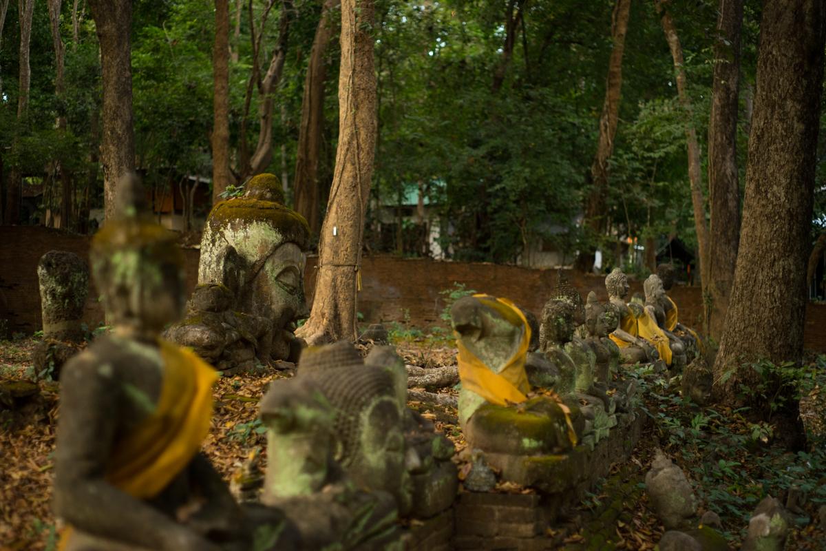 Wat Umong Chiang Mai Thailand